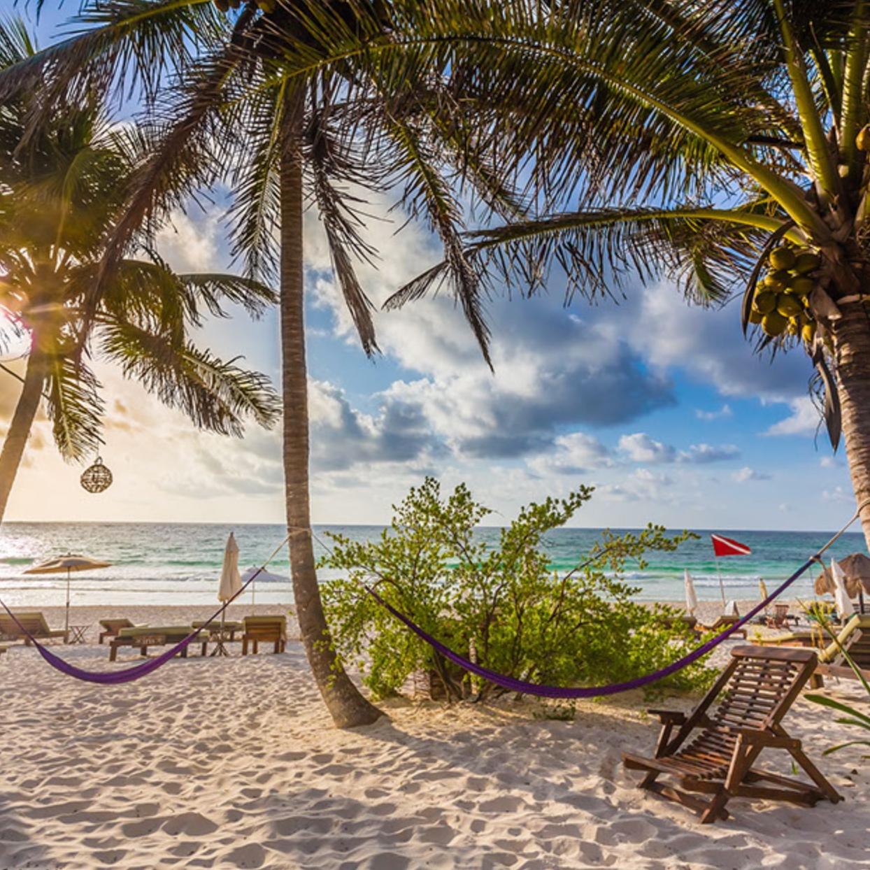 lazy wellness winter retreat - February 14-19Tulum, MXYoga, meditation, astrology, plant-based menu, beachside relaxation!Hosted by Megan Cuzzolino