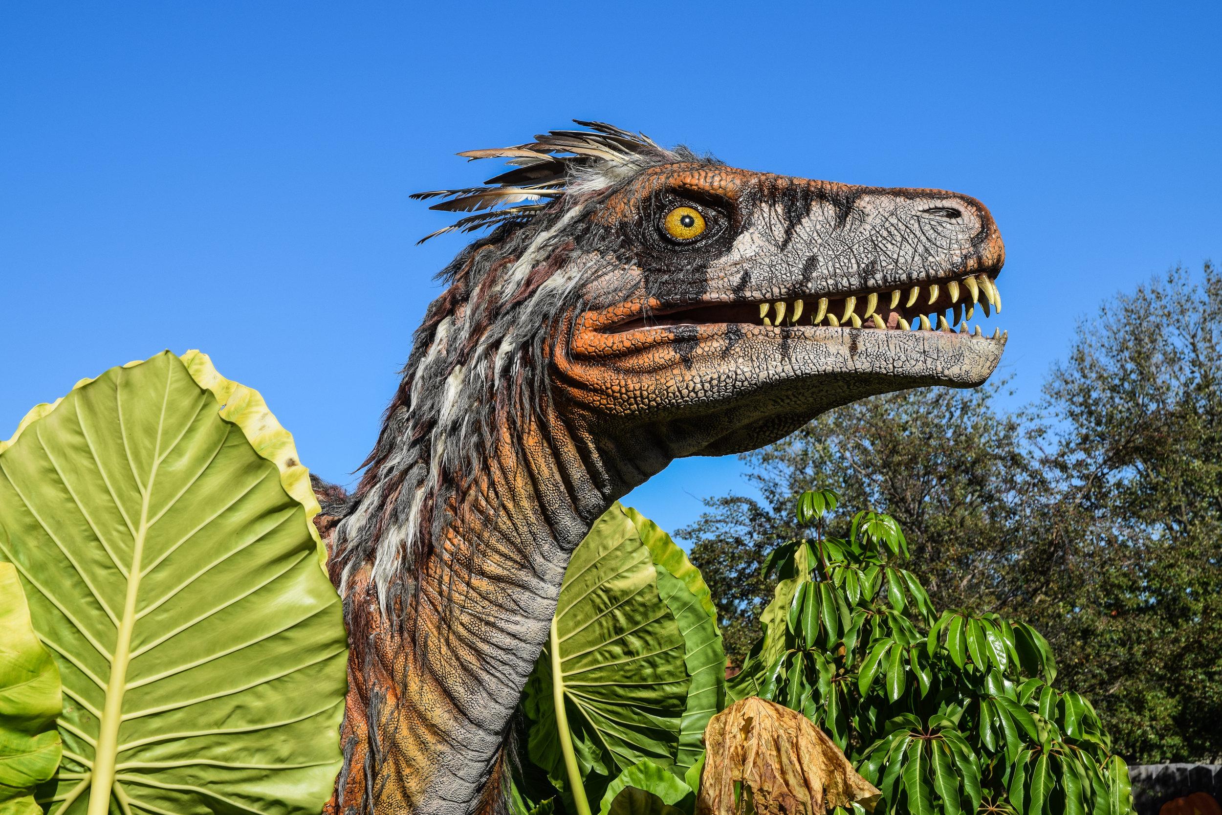 A dinosaur head poking through trees