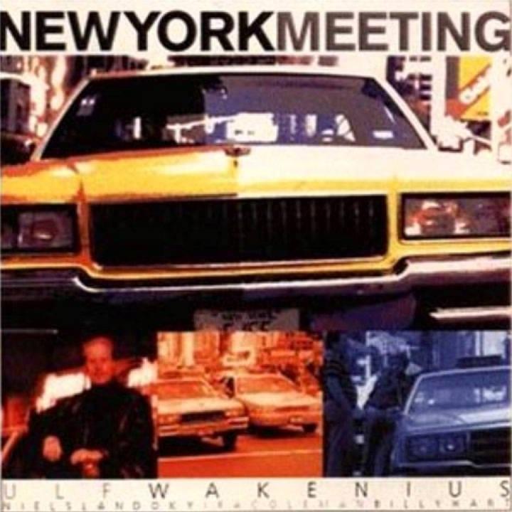1994 - Ulf Wakenius - New York Meeting (Double Check This).jpg