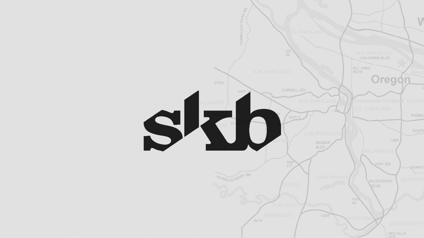 SKB-cover.jpg