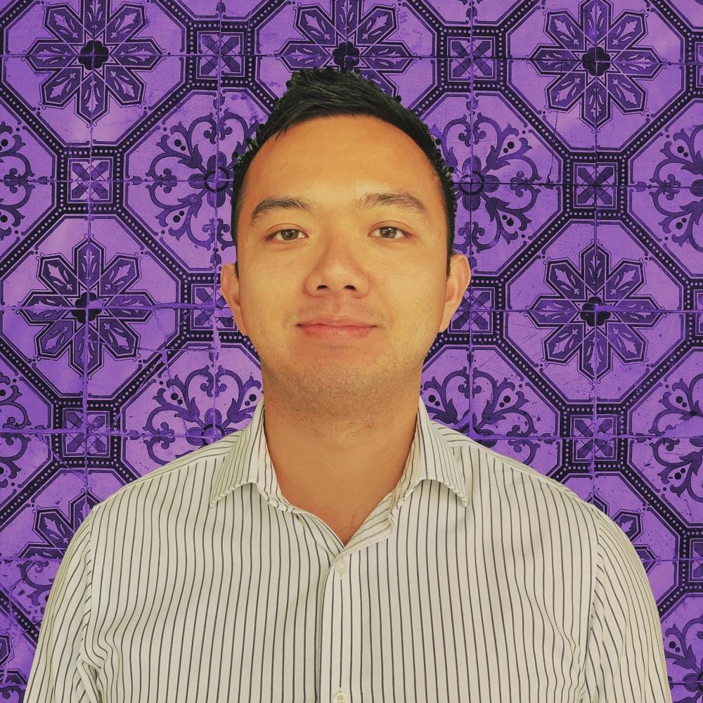 DavidNguyen - Analyst
