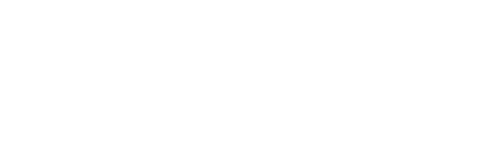 Insight and strategy white .png