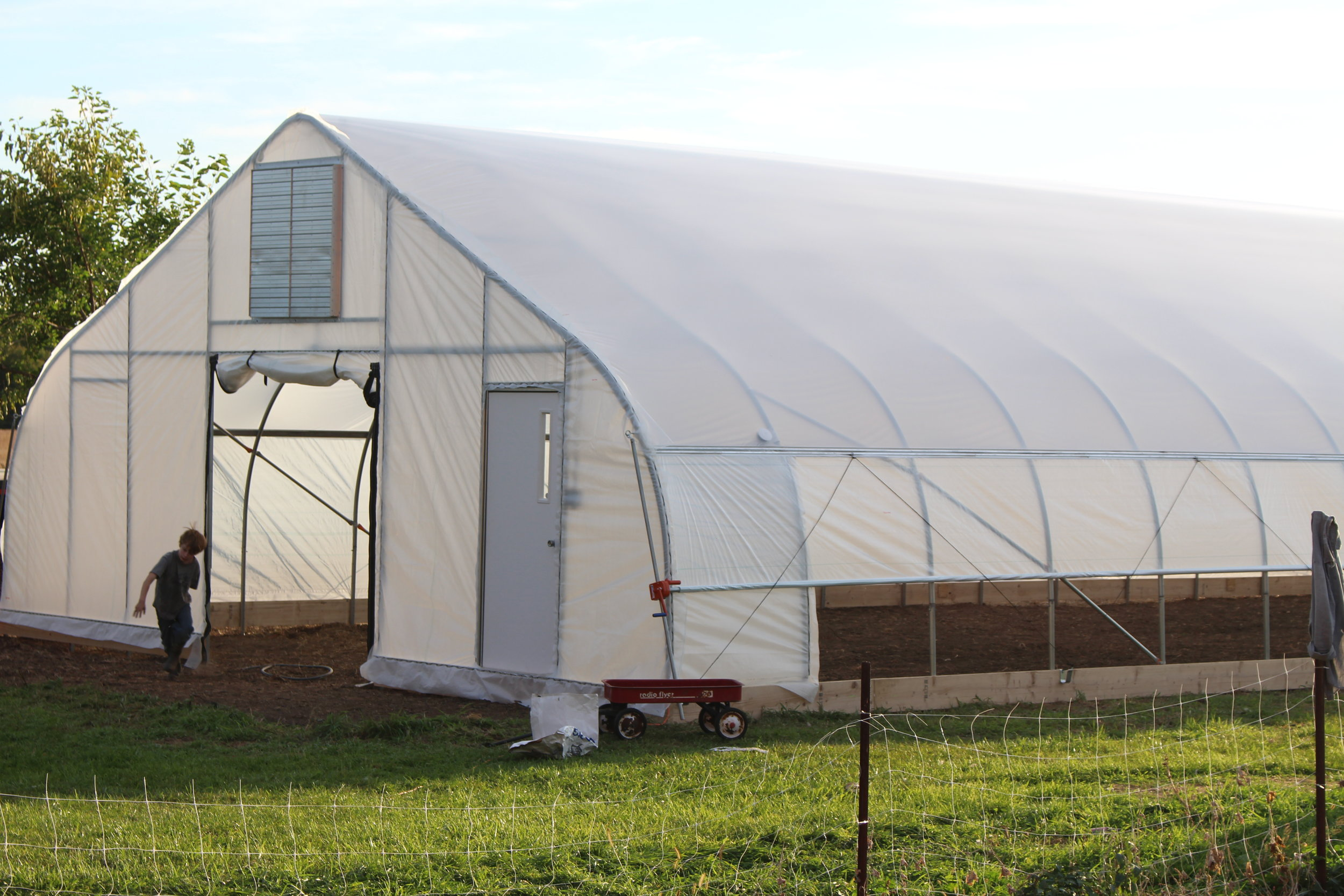 30' Gothic —  Nifty Hoops' flagship structure. Strong and grower-friendly