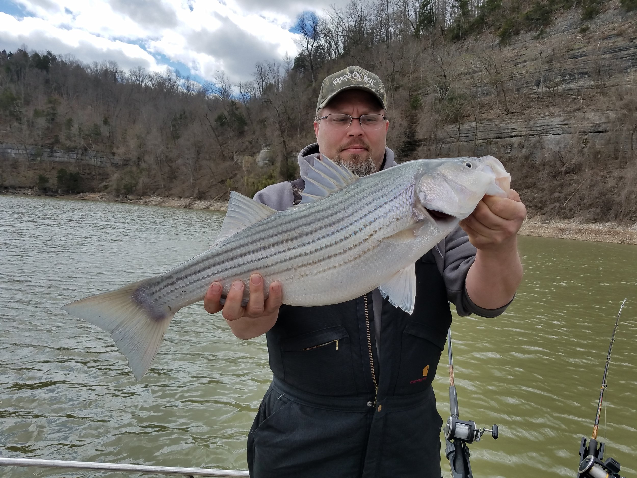 Stripers feeding up in the Winter.