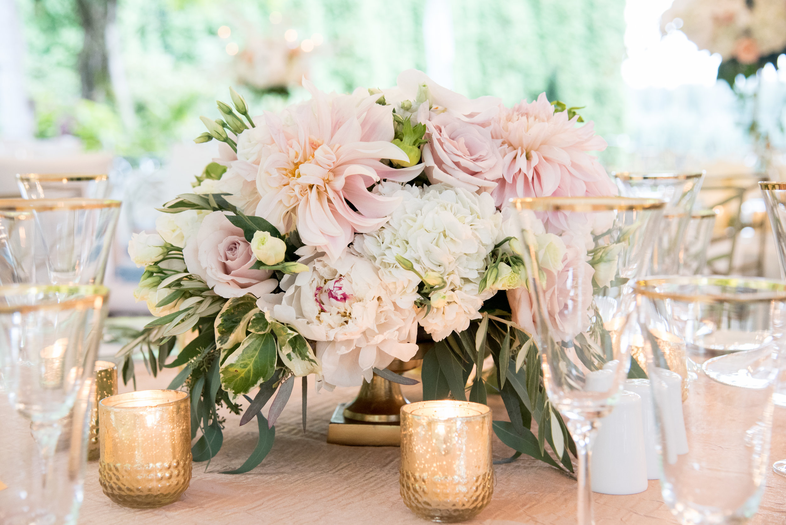 Elegant and Stunning Phalaenopsis Orchid Centerpieces