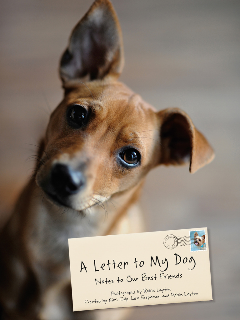 A Letter To My Dog