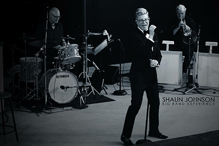 Shaun Johnson Experience - Vocalist with Big Band