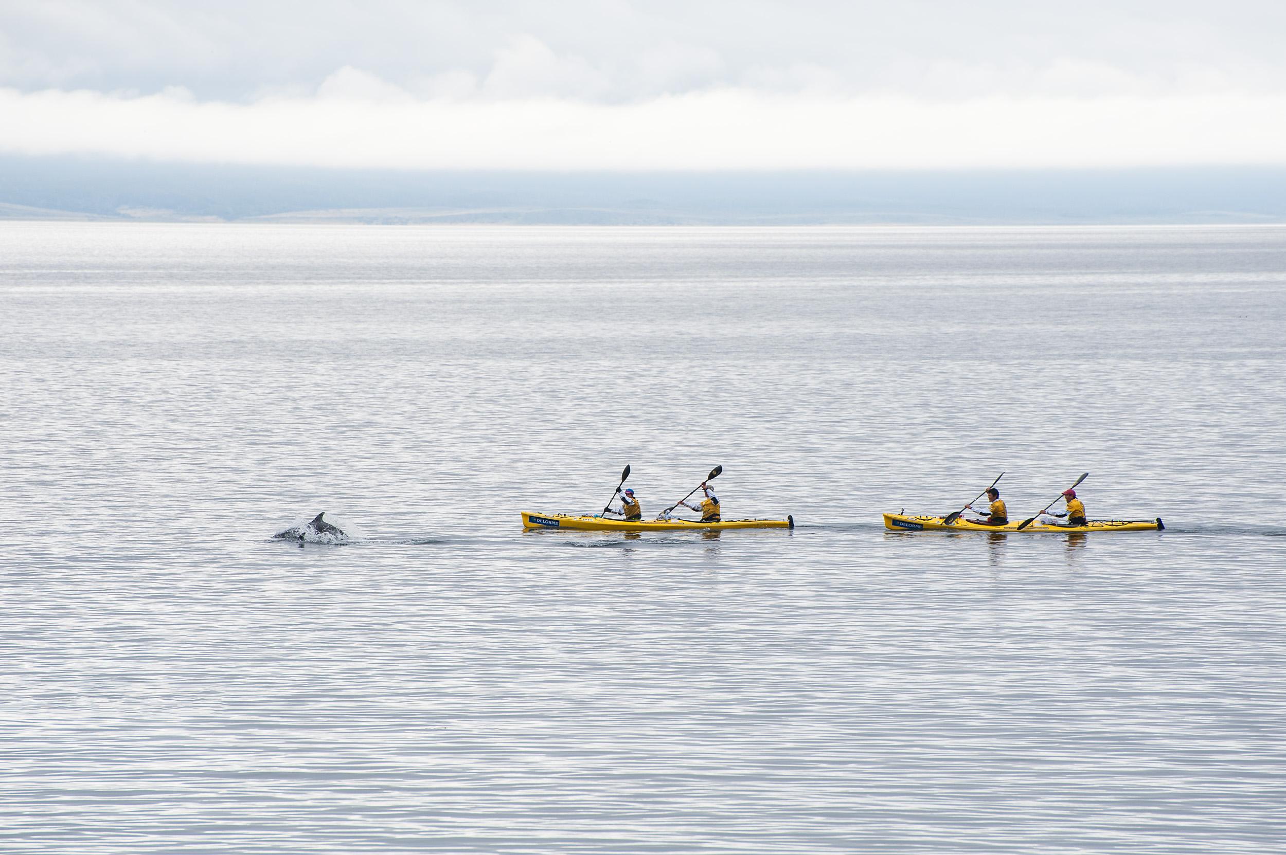 Sea kayaking - Chile