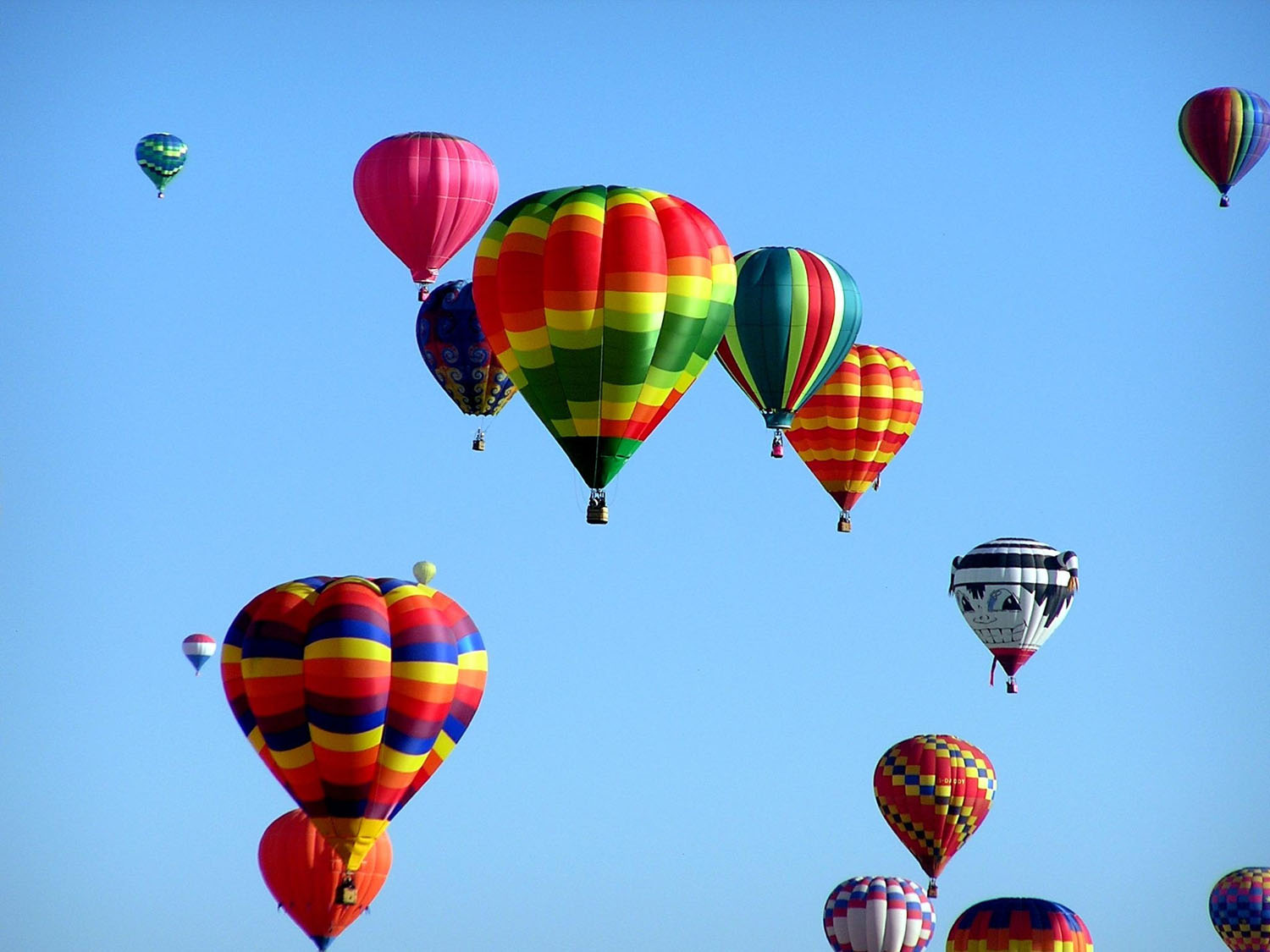 A goupr of hot air balloons rising together at a tourism event