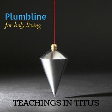 plumbline-1.png
