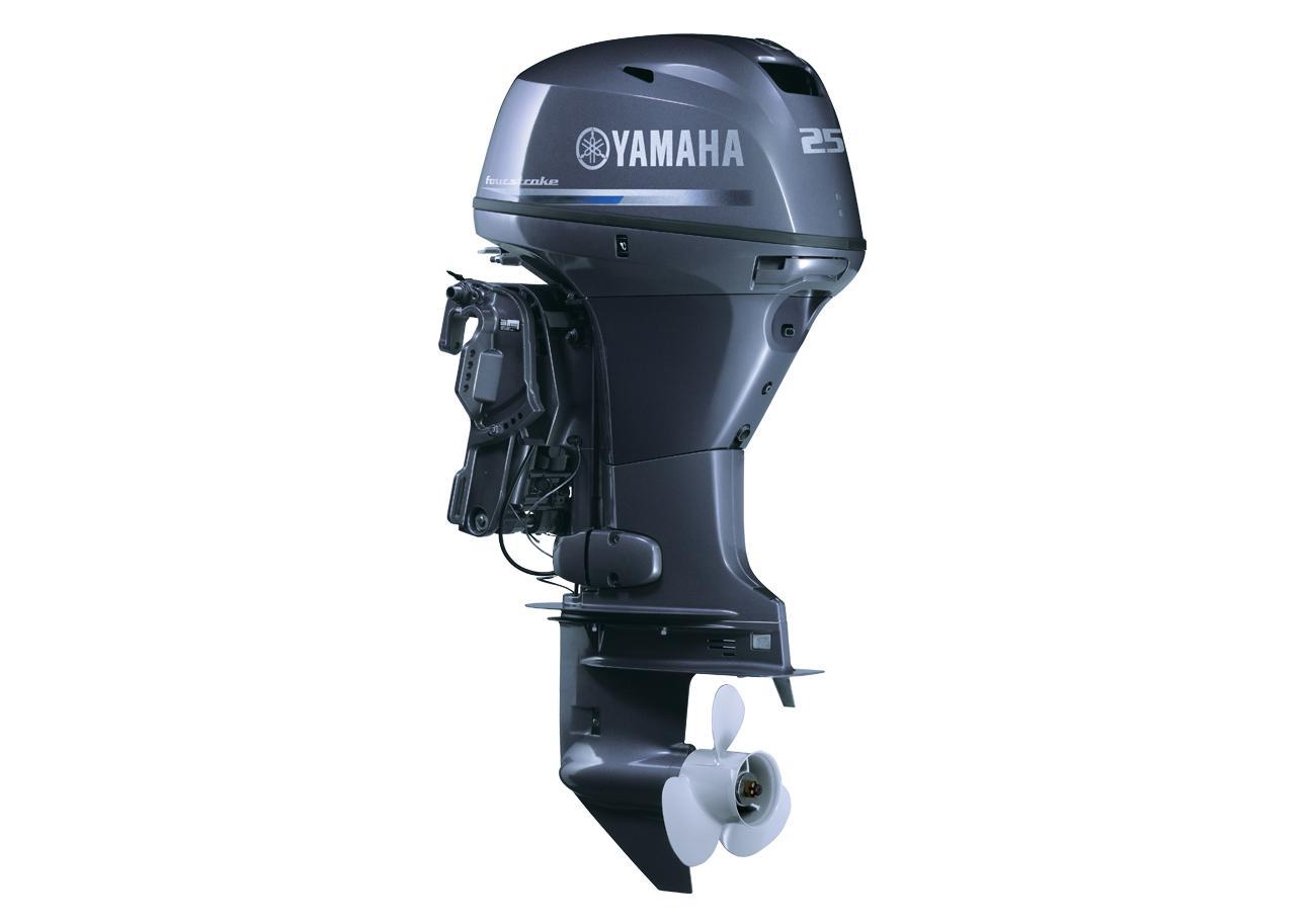 Yamaha FT25
