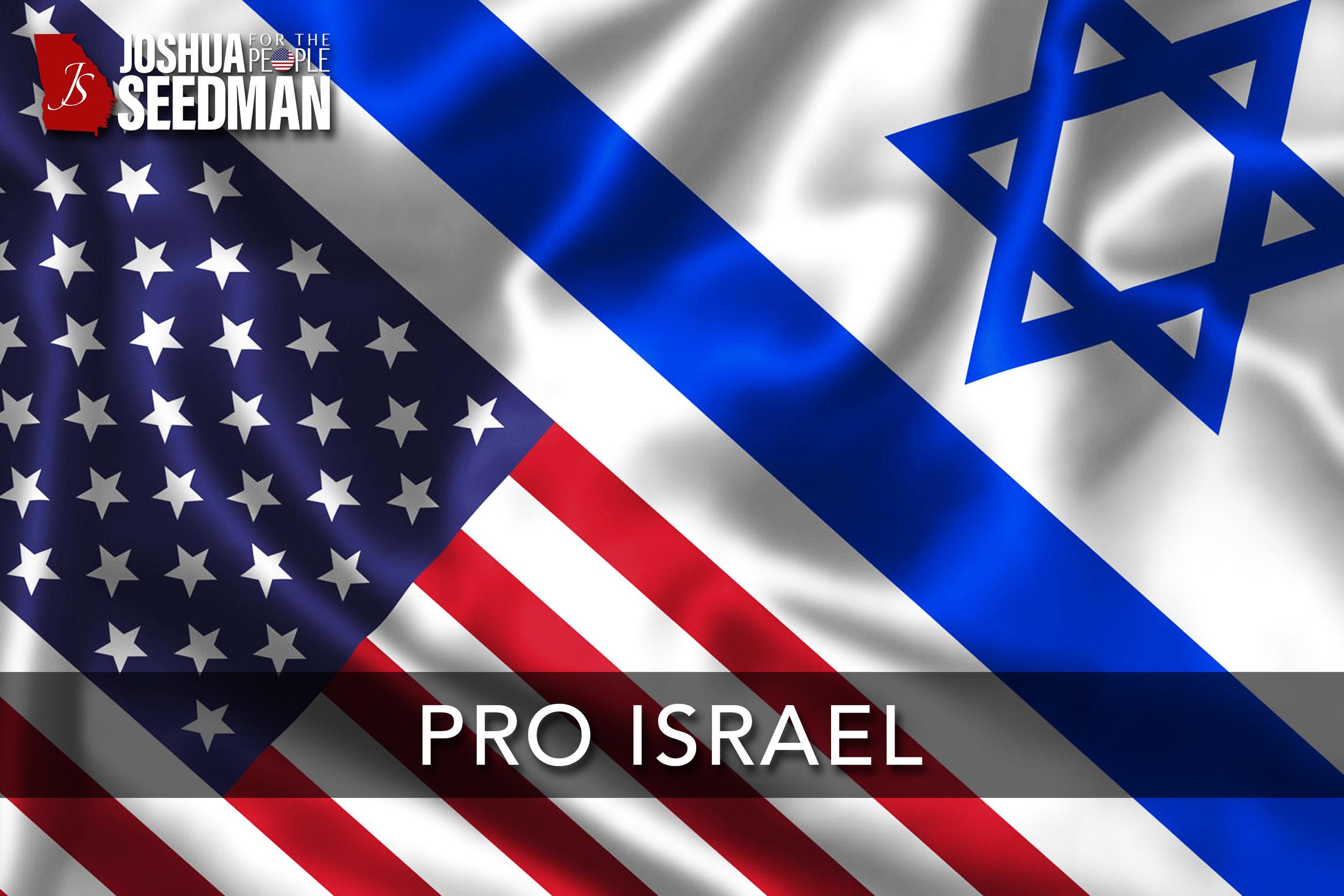 Pro Israel.jpg