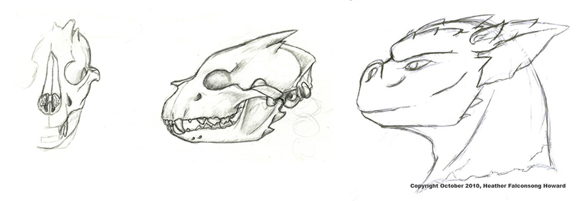 CalebAnatomicalSketches.jpg