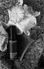 African+Bot+Fleurs+dAfrique+SMALL.png