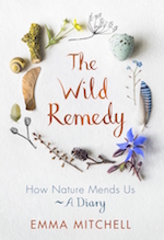 The Wild Remedy (read my review  here)
