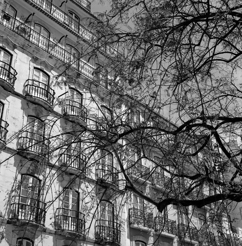 TriX-Lisbon-WalkingAround2 2.jpg