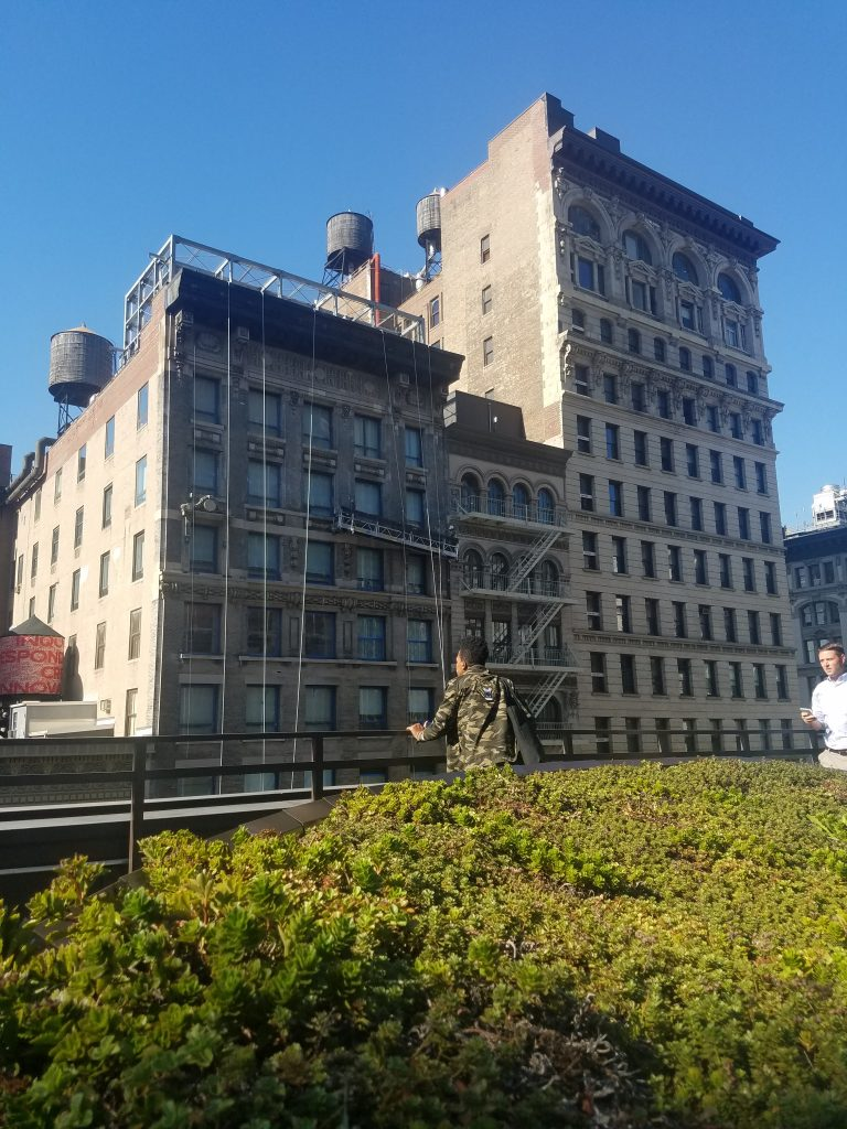 closer-shot-of-greenery-with-building-and-lady-2-e1508955155400-768x1024.jpg