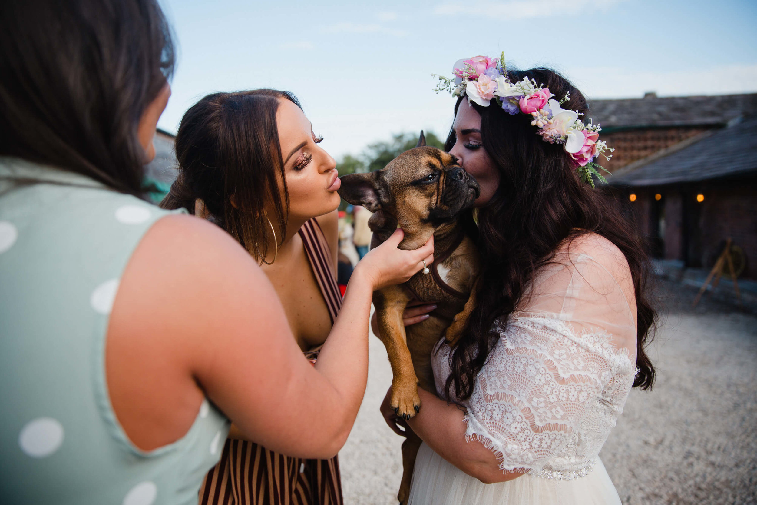 bride kisses pet dog with wedding guests