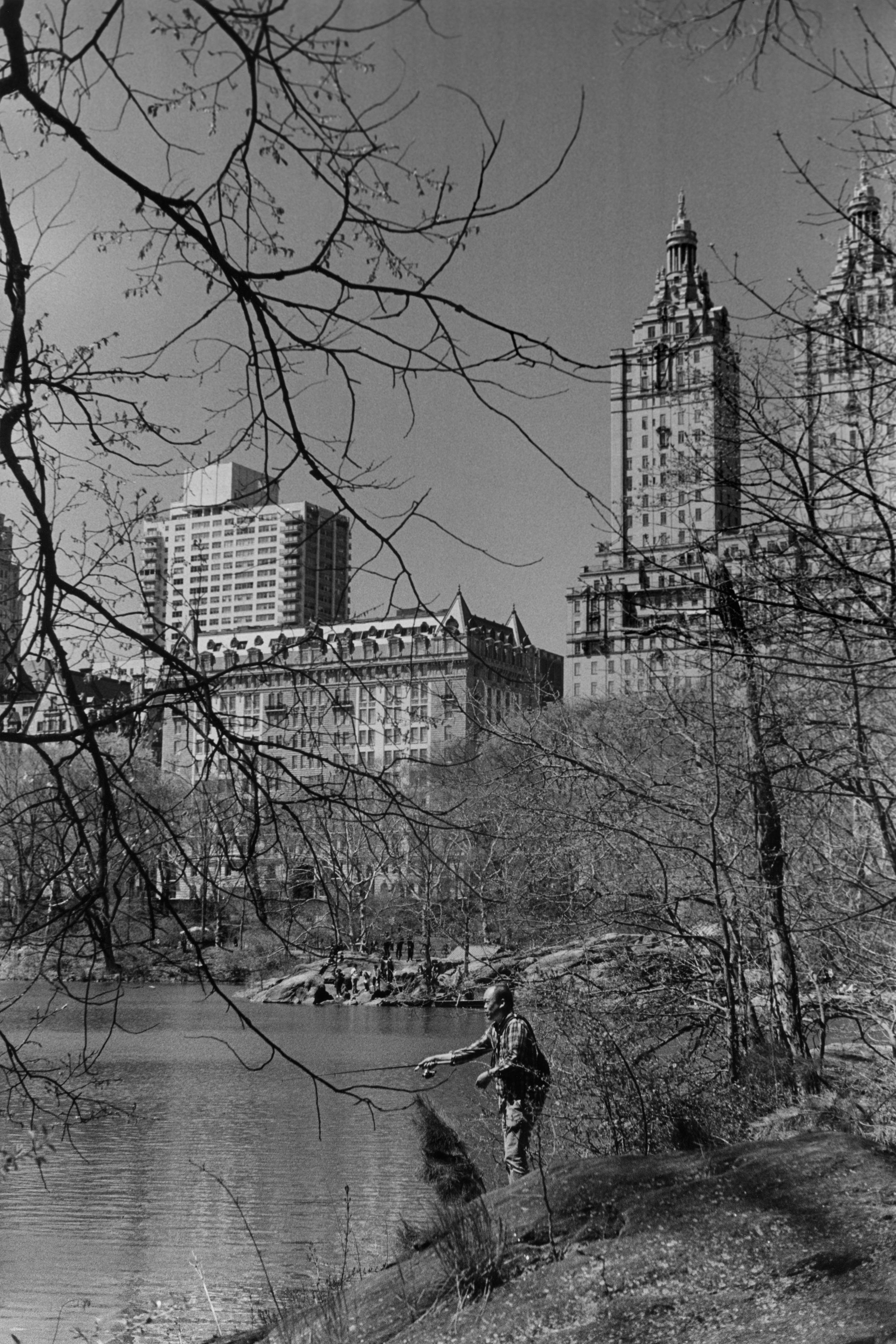 New York Fishing Hole