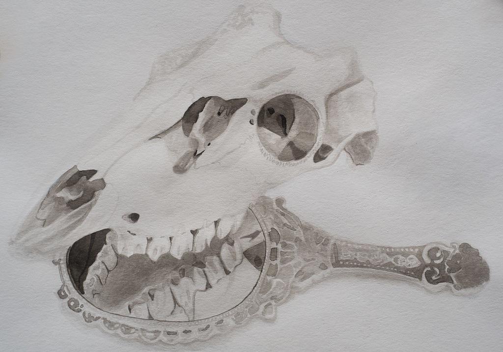 Skull & Mirror
