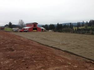 Dart Creek Farms Heavy Use Pad