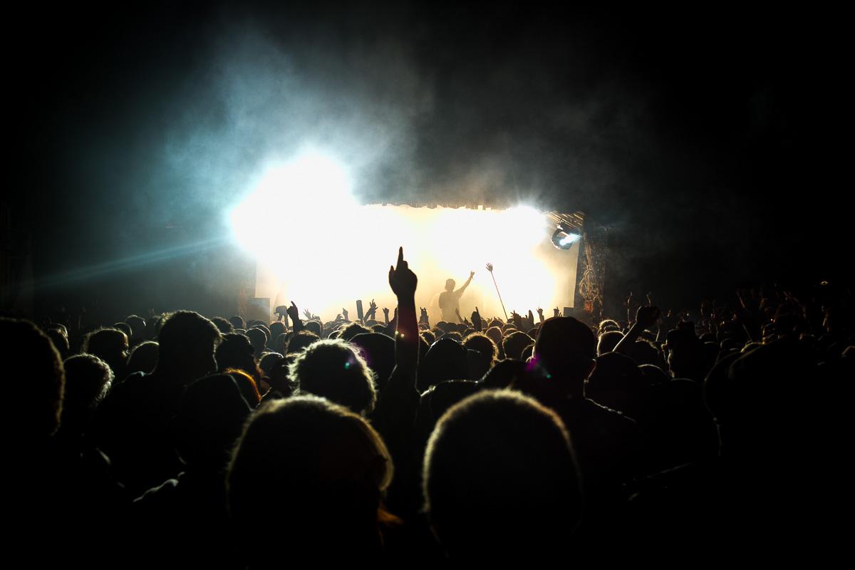 Crowd shot at Nozstock festival