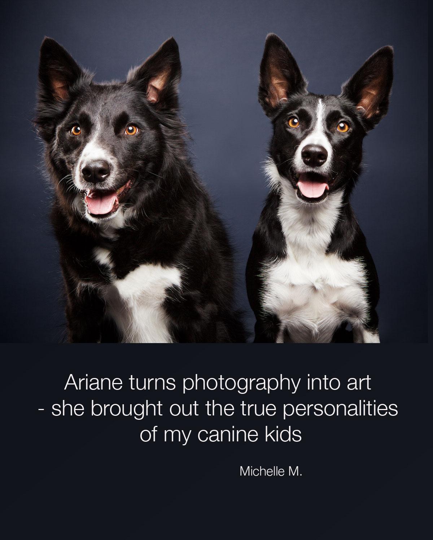Michelle-dogs.jpg
