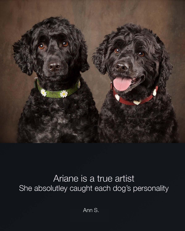 Ann s - Harper & lark copy.jpg