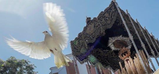 A dove is part of Easter festivities in Seville, Spain, on Holy Tuesday, April 16, 2019.  (Photo: Jose Manuel Vidal, EPA-EFE)