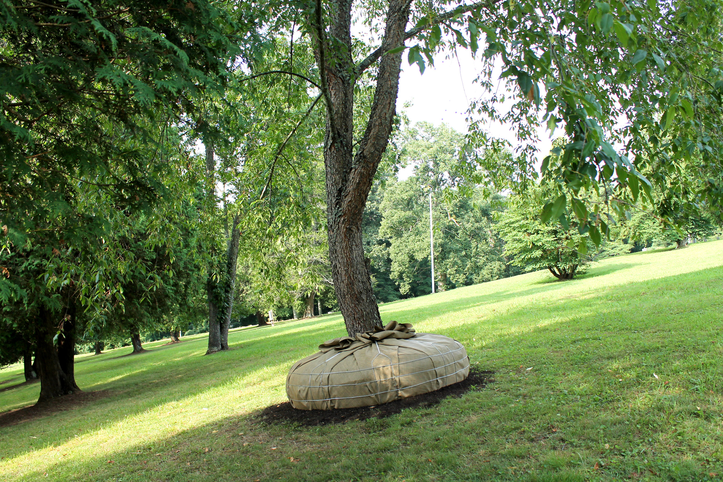 In-Transit  / 2016-19 / Steel, vinyl, rope, soil, preexisting cherry tree / 1.5' x 6.5' x 6.5'(base)