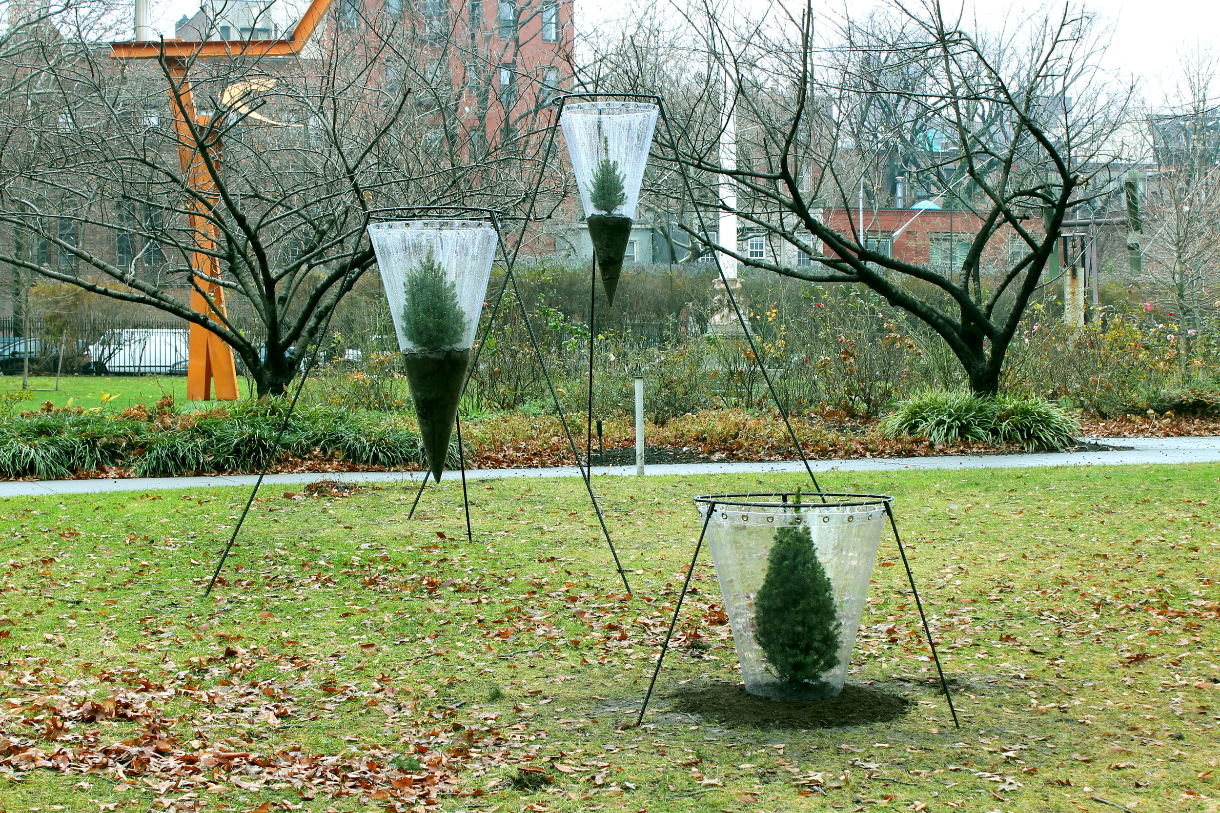 Ascent  / 2012-15 / Clear vinyl, steel, grommets, cable, soil, spruce trees / 8' x 27' x 12'