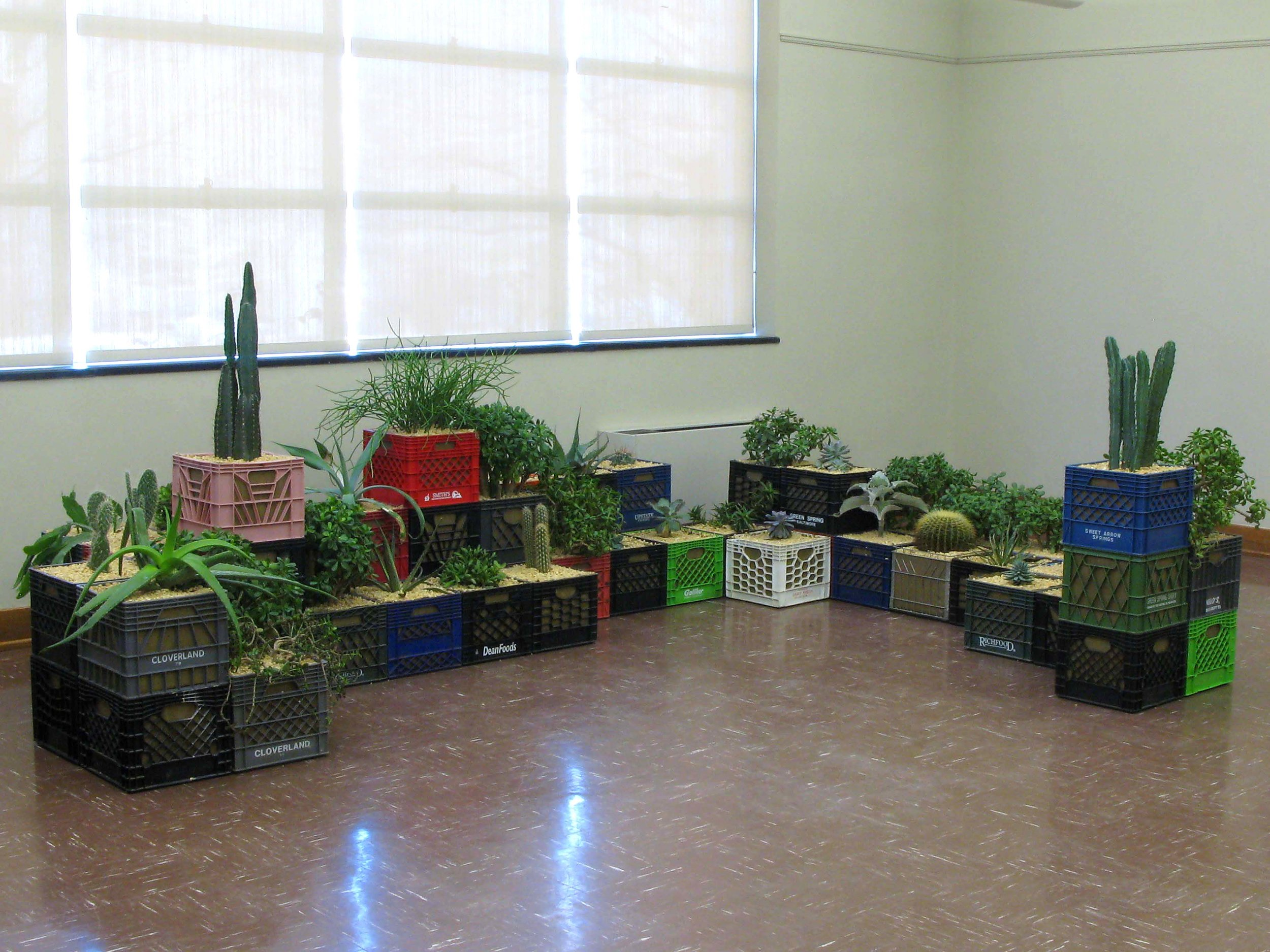 Pioneers  / 2008 / Milk crates, burlap, gravel, soil, succulent plants / 5' x 14' x 10'
