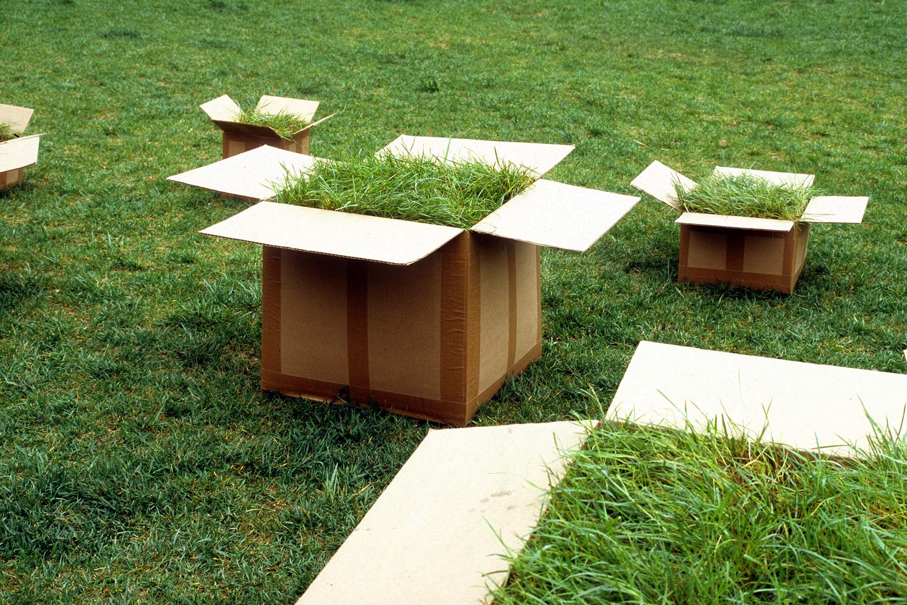Detail of boxes