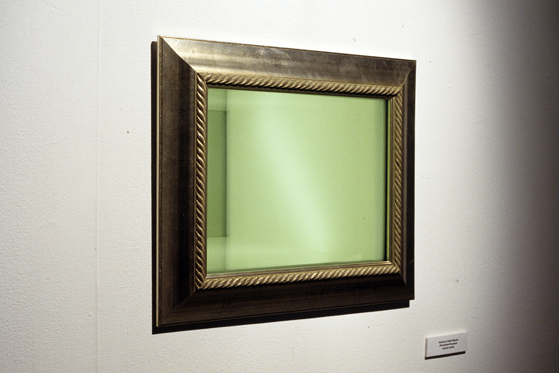 Freedom/Discipline  / 2004 / Frames, mirrors, acrylic, lights / dimensions variable