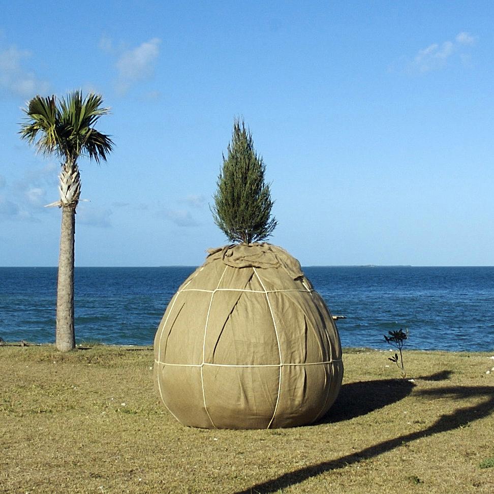 Sculpture Key West 2009