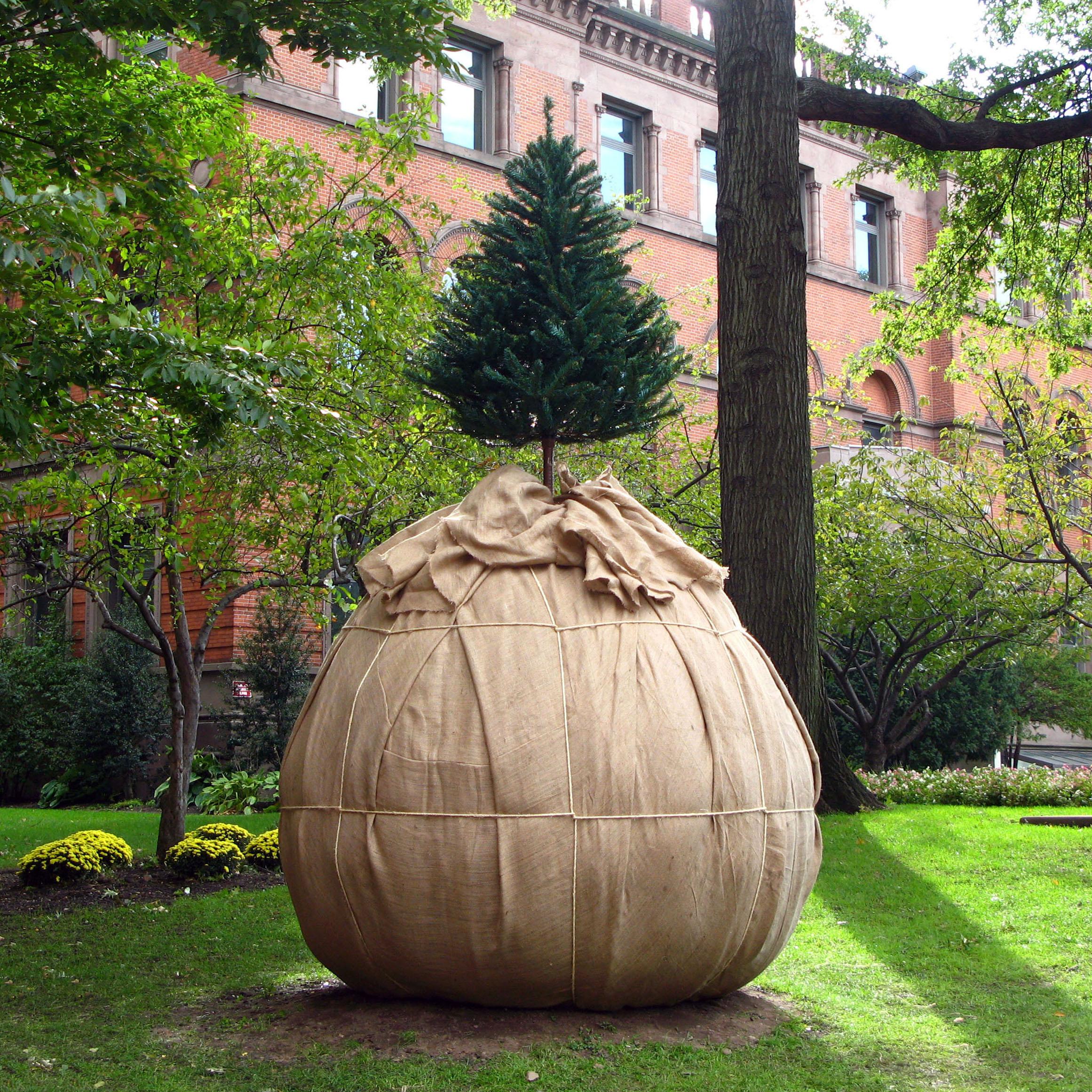 Pratt Sculpture Garden 2010-12