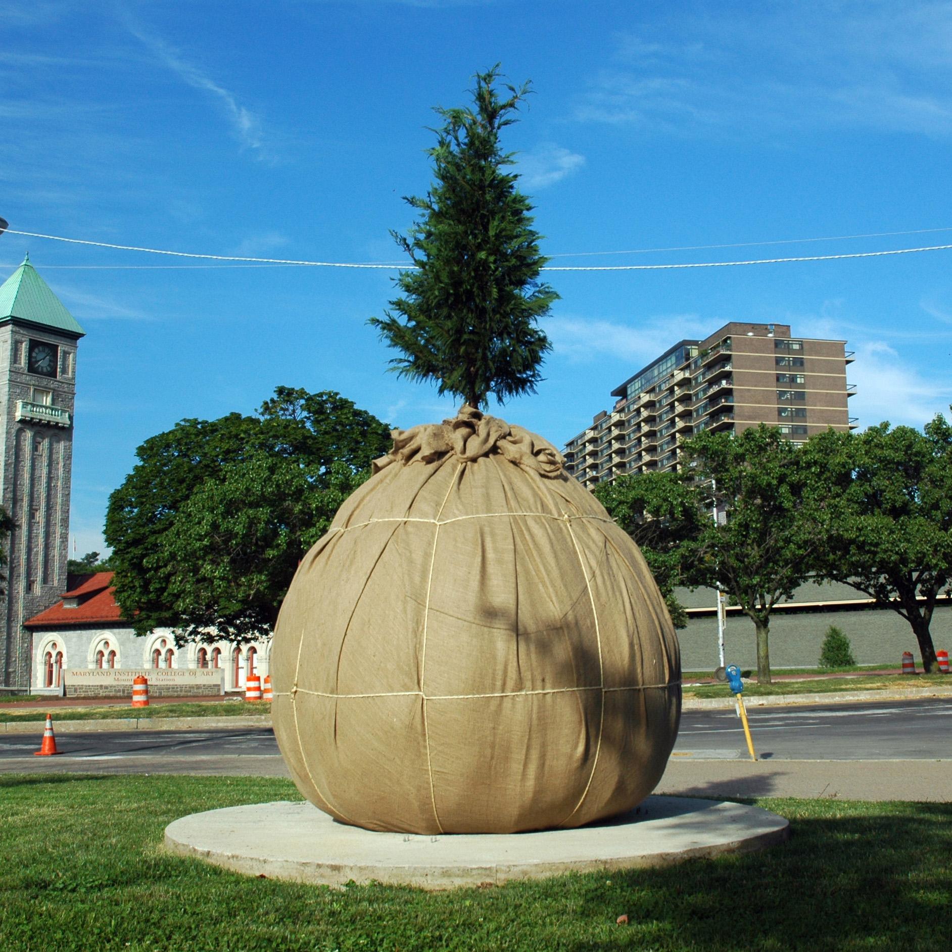 Baltimore Sculpture Project 2009-10