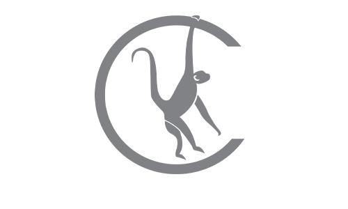 charasthenics-logo.png