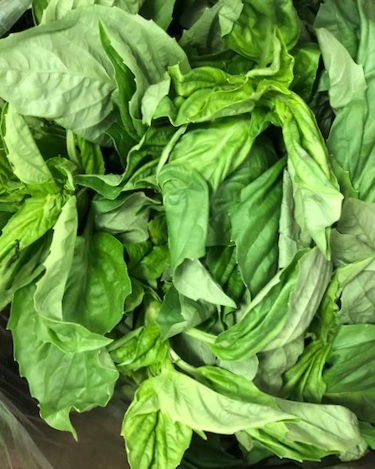 basil - Locally Grown