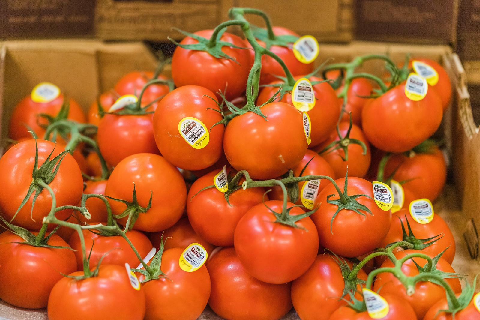 tomatoes on the vine 4.jpg