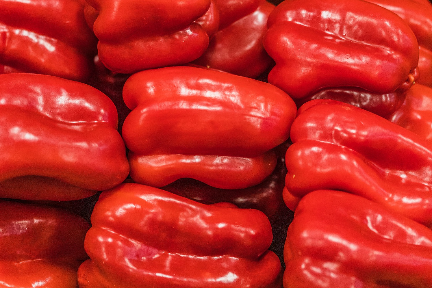 Peppers -