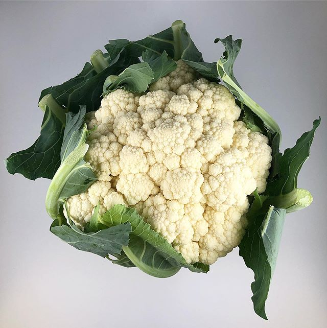 """Did you know: Cauliflower was first cultivated in Turkey in 600 B.C.?! Cauliflower is a year long item that has multiple sources of Vitamins from the C, K and B groups! Medical studies have revealed that substances from this vegetable can prevent the development of certain cancers. Amazing! With new recipes such as """"cauliflower crust"""" restaurants around the country are ditching the dough and helping us all enjoy a healthier alternative to some of our favorite guilty pleasures! Come by today and grab some of our Maine grown cauliflower before their season is over!~ • • • • #cauliflower #cauliflowerpizza #cauliflowergnocchi #cauliflowerrice #cleaneats #veggies"""