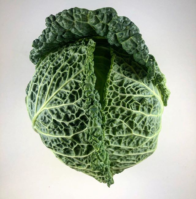 """This variety of cabbage is referred to as """"savoy."""" Savory cabbage is thought to have originated from England and the Netherlands. However, this crop is named after the Savoy region of France 🤷🏽♂️. This funky green crop is PACKED with health benefits. Savoy can be a great source of protein, thiamin, calcium, phosphorus and copper... did you get all of that?? On top of that it is loaded with vitamins.~ - - - #vegetables #cabbage #savoy #vitamins #protein #philadelphia #green #eatgreens #healthyfood"""