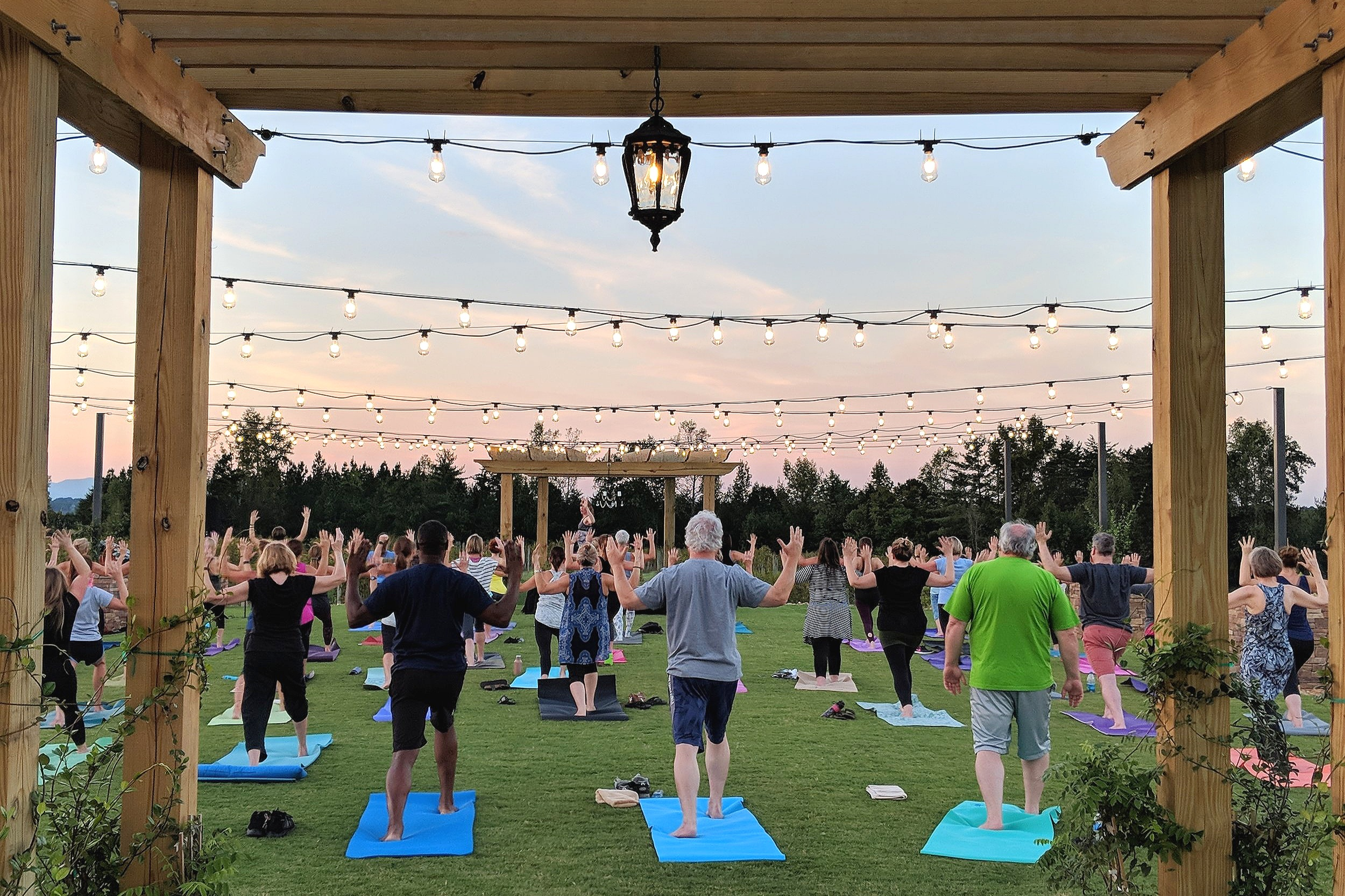 Yoga Night in the Vineyard Garden