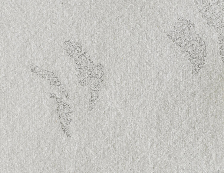 shadow-pieces-4.jpg