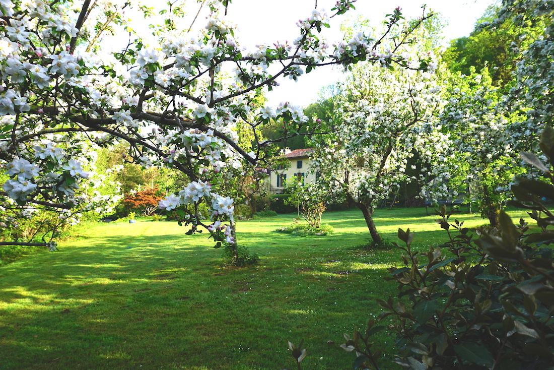 house from english garden.jpg