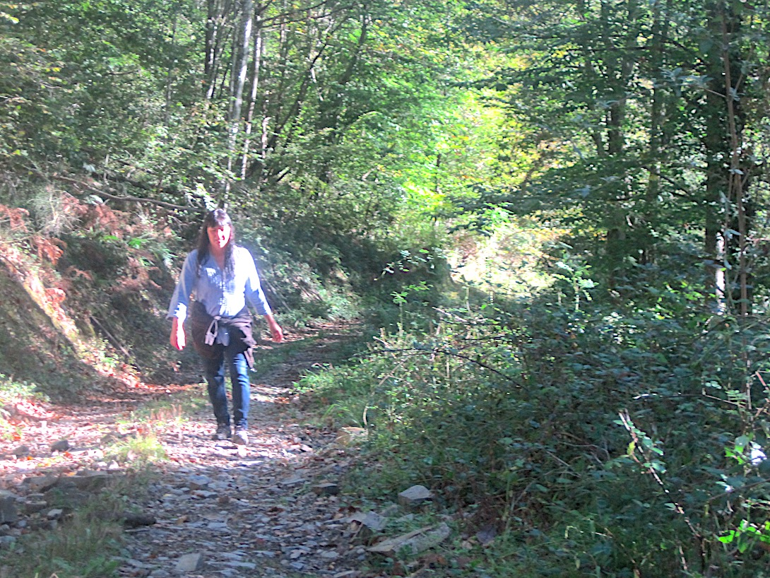 All our retreats give access to forest walks from the door of Tourné