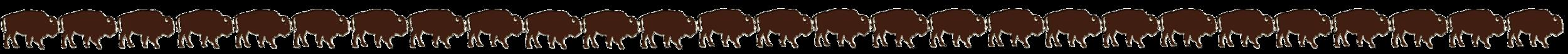 bison line.png