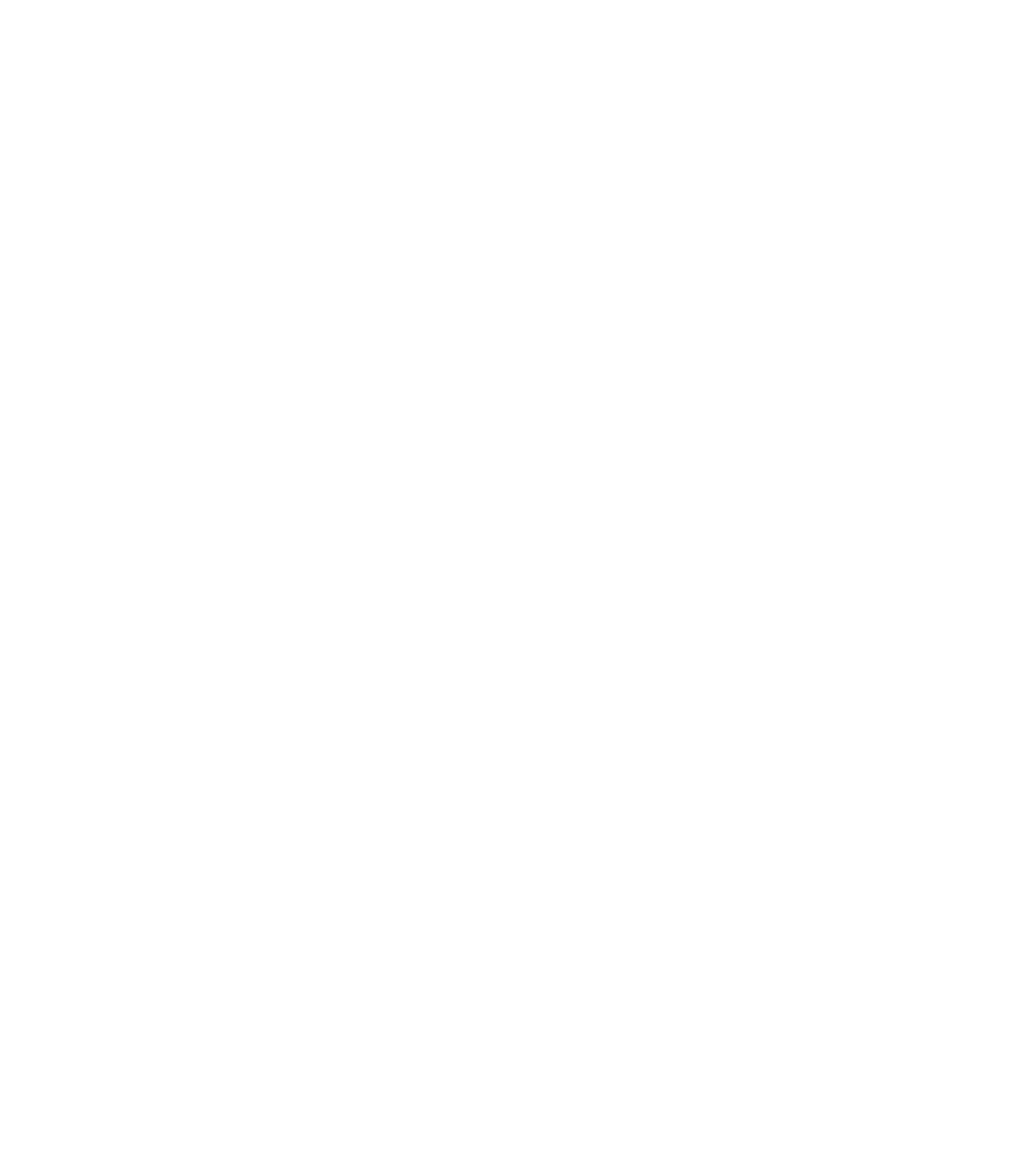 cat-white-transparent.png