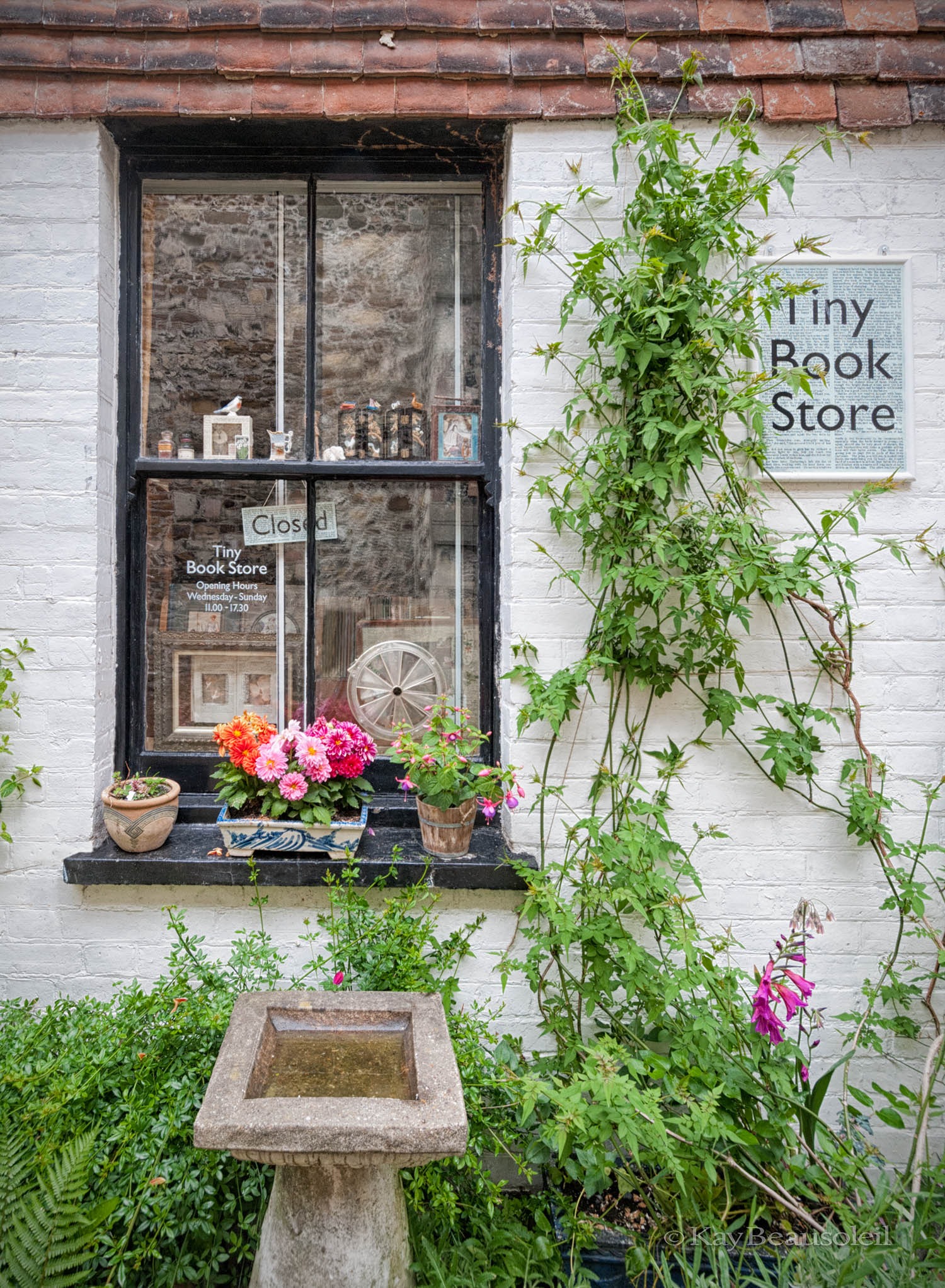 Little Things:  TINY BOOK STORE